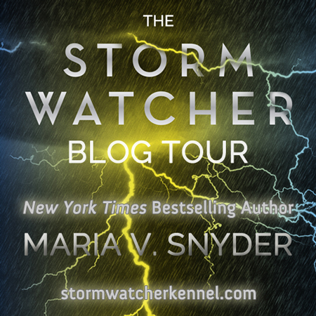 The Storm Watcher Blog Tour